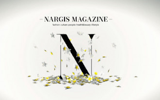 NARGIS 1st issue summary